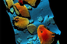 Sonardyne laser scans California seabed
