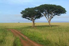 Date set for Uganda-Tanzania pipeline construction