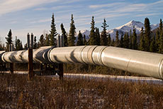 NEB calls on Trans Mountain to file additional studies on pipeline expansion