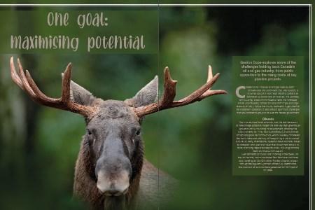 One goal: maximising potential